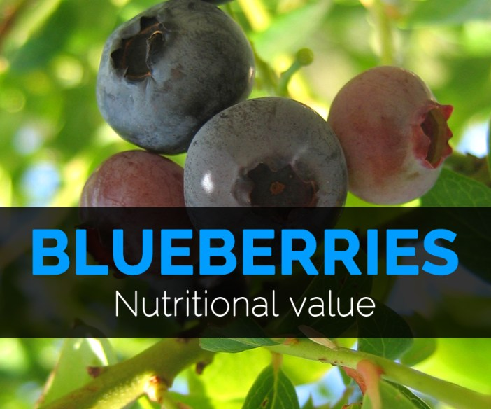 Blueberries-nutritional-value