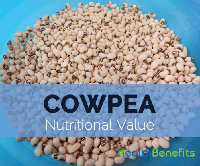 Cowpea-nutritional-value