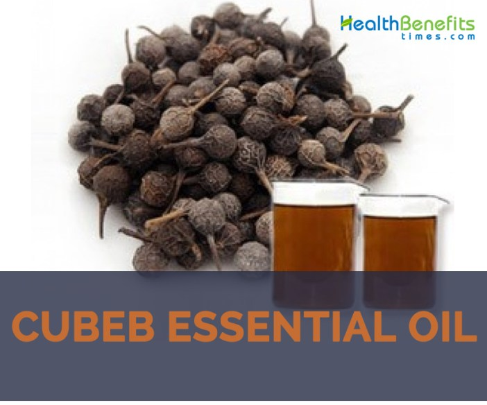 Cubeb essential oil facts and benefits