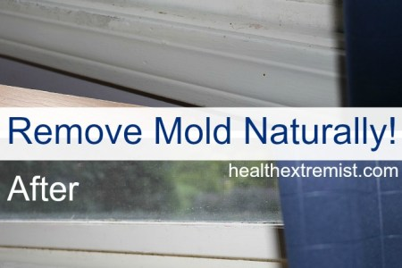 How to Get Rid of Mold Naturally   3 Ways  How to Get Rid of Mold Naturally
