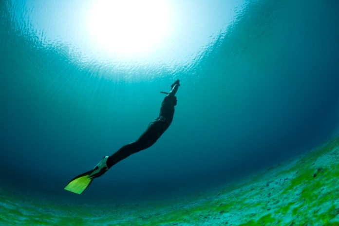 health benefits of free diving