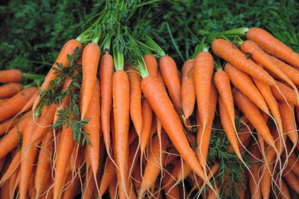 The Top Ten Health Benefits of Carrots