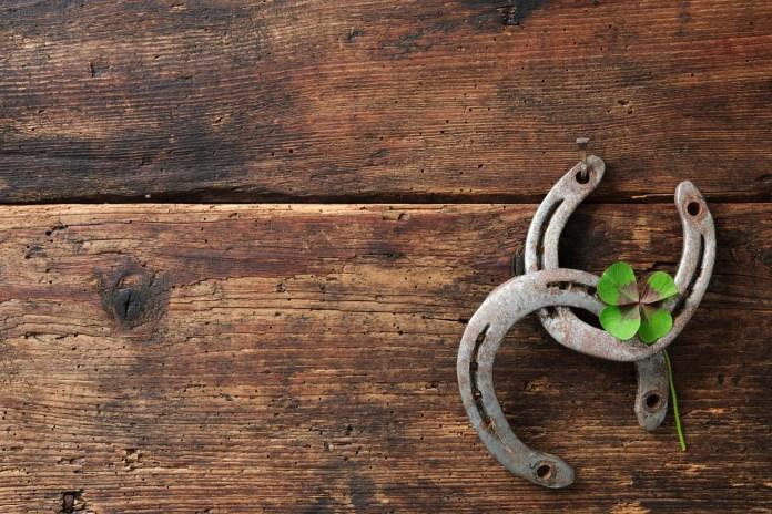 health benefits of horseshoes