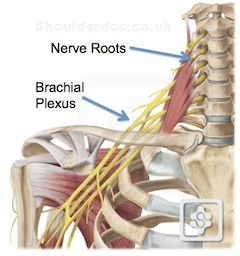 48 year old suffering with trigeminal neuralgia, frequent headaches, neck and low back pain