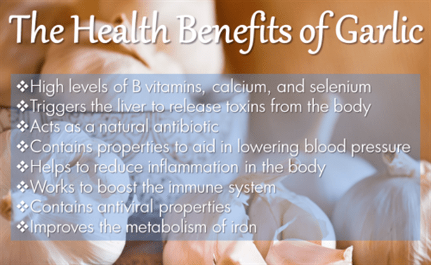 infographic-the-health-benefits-of-garlic