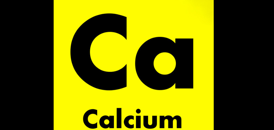 What Does Calcium Do?