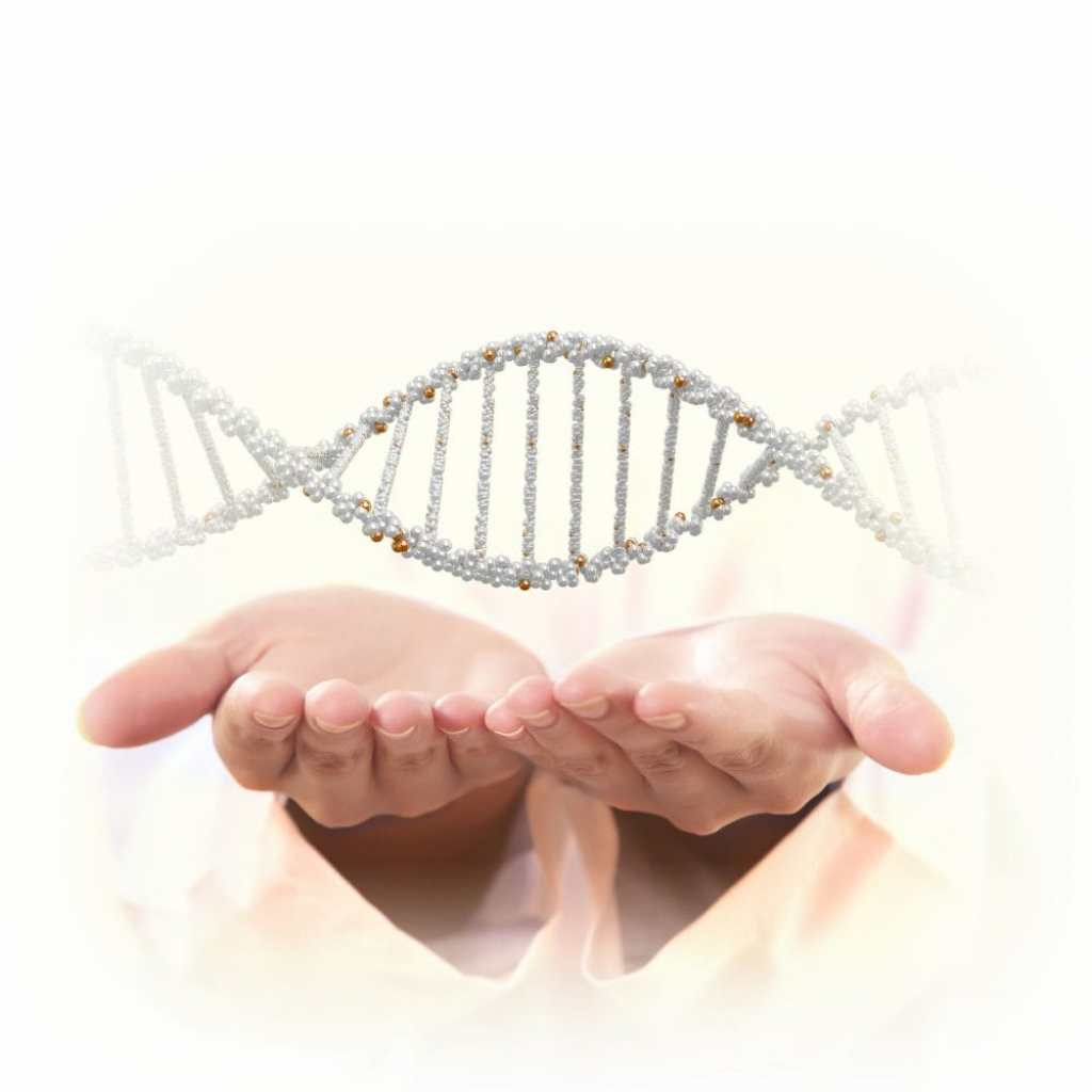 genome Copyright: nexusplexus / 123RF Stock Photo