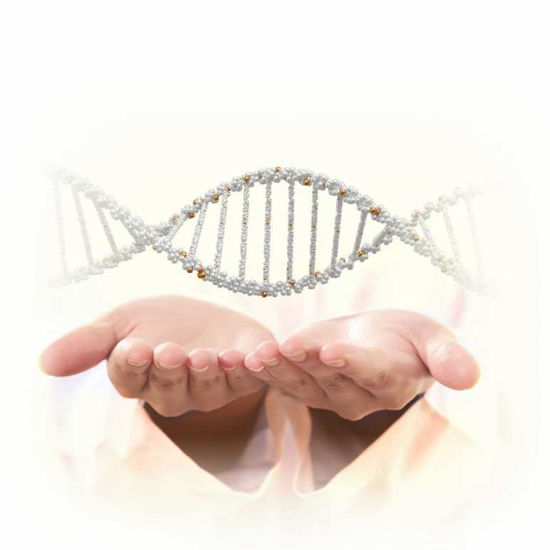 genetics Copyright: nexusplexus / 123RF Stock Photo