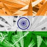 37089795 - india flag on cannabis background. drug policy. legalization of marijuana: Copyright: promesaartstudio / 123RF Stock Photo
