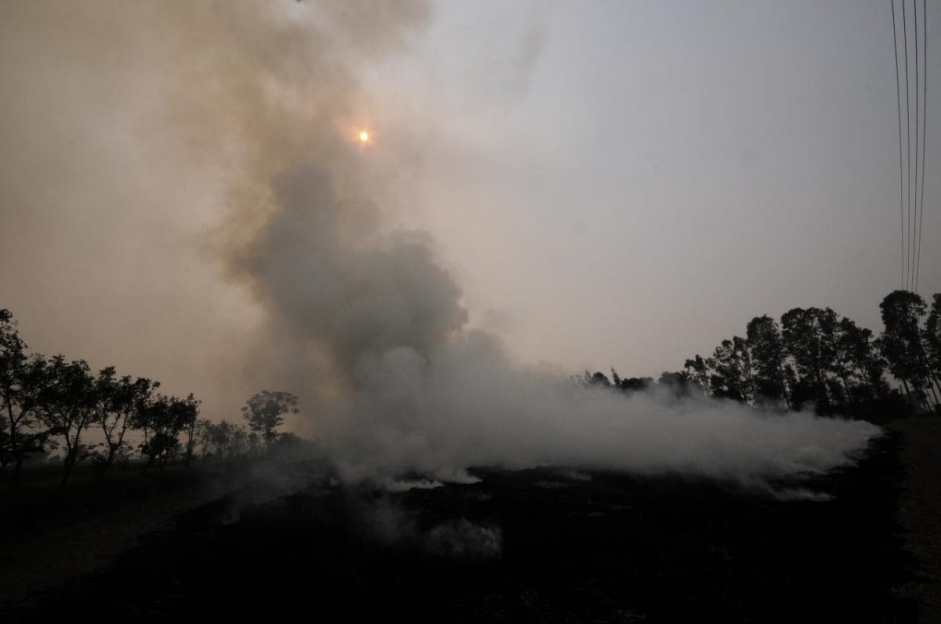Delhi a 'gas chamber' once more. Crop burning to blame?