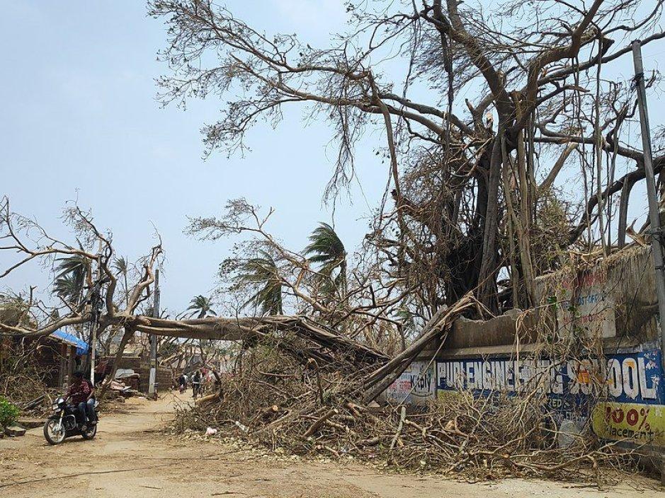 India makes emergency preparedness pledge
