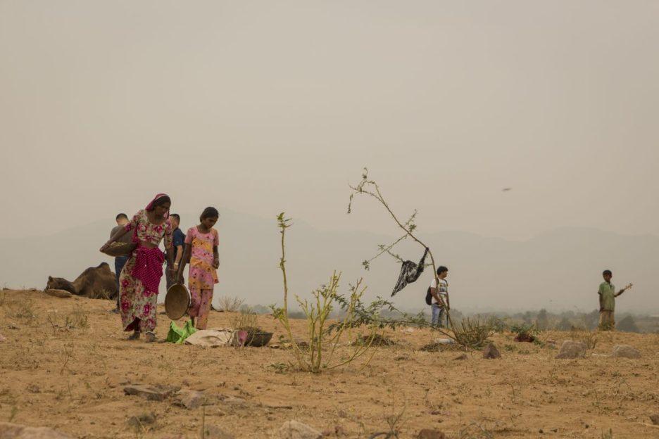 PUSHKAR, INDIA -October, 31, 2014 : native woman in countryside area in Pushkar city.