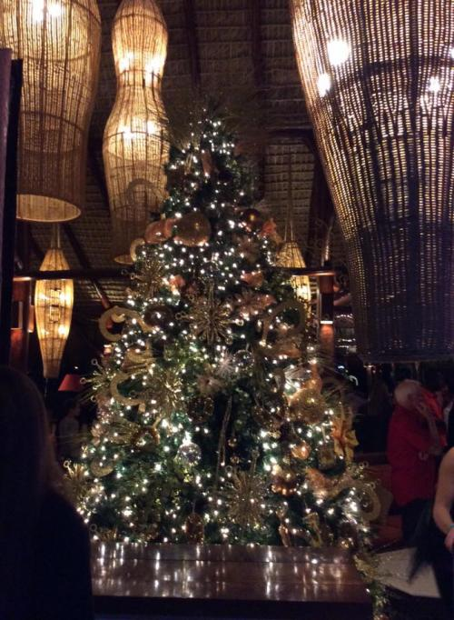 christmas tree club med punta cana review resort by healthista