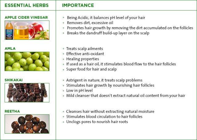 Essential Herbs for Hair loss