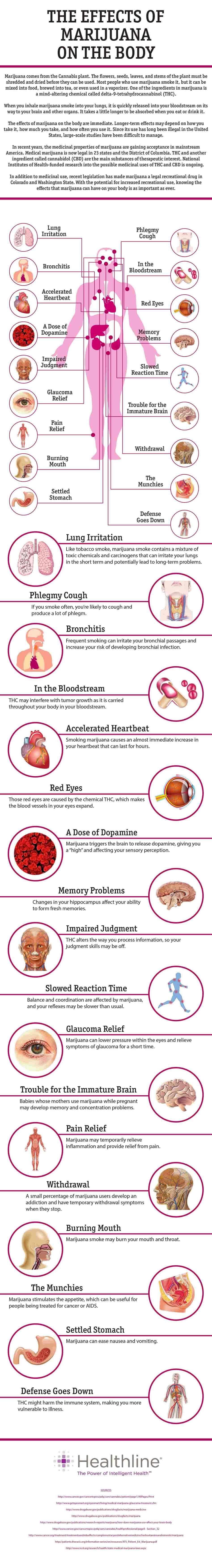 The Effects of Marijuana on the Body
