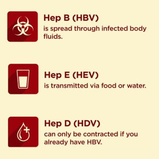 Types of Hepatitis, hepatitis c treatment, cure for hepatitis c, can hepatitis c be cured, hepatitis c generics, generic harvoni, harvoni cost, epclusa cost