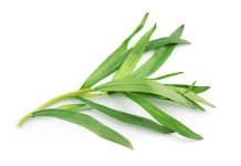 Benefits of Tarragon