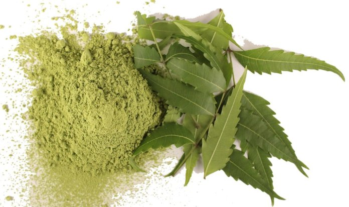 neem health benefits