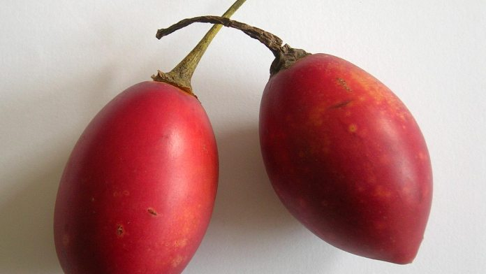Benefits of Tamarillo