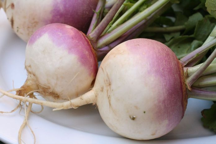 Turnip Benefits for Weight Loss