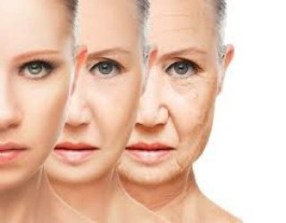 antiageing, anti ageing food