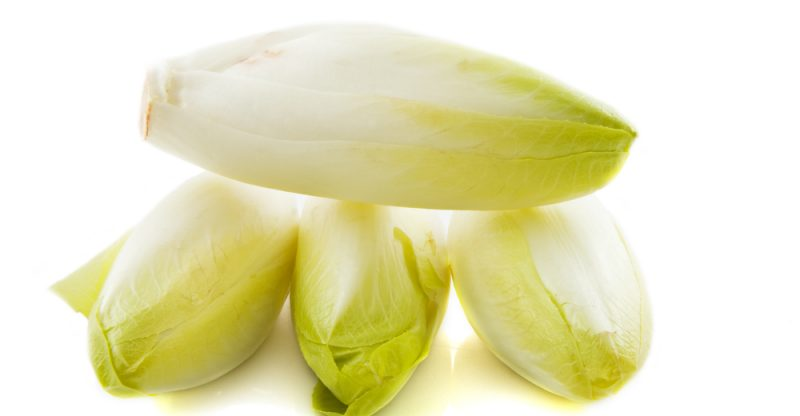 benefits of Endive