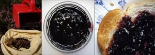bilberry jam, bilberry benefits