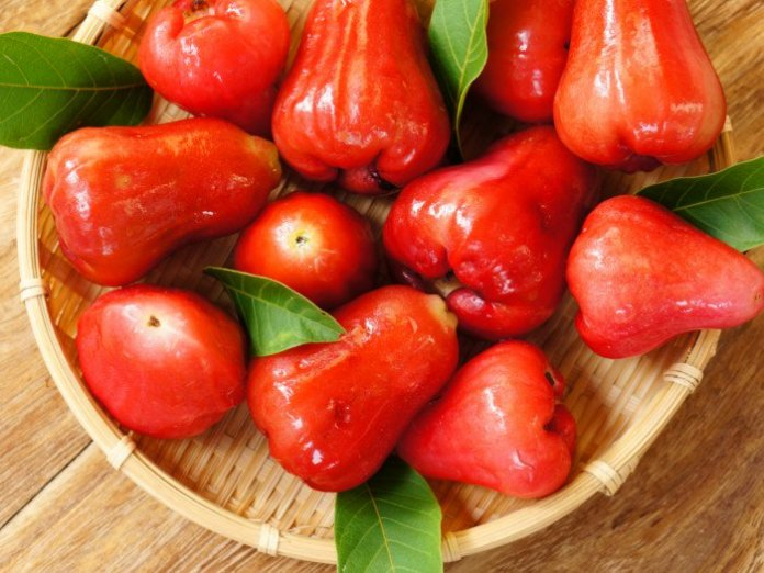 benefits of rose apple