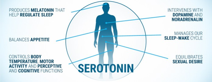 serotonin rich foods