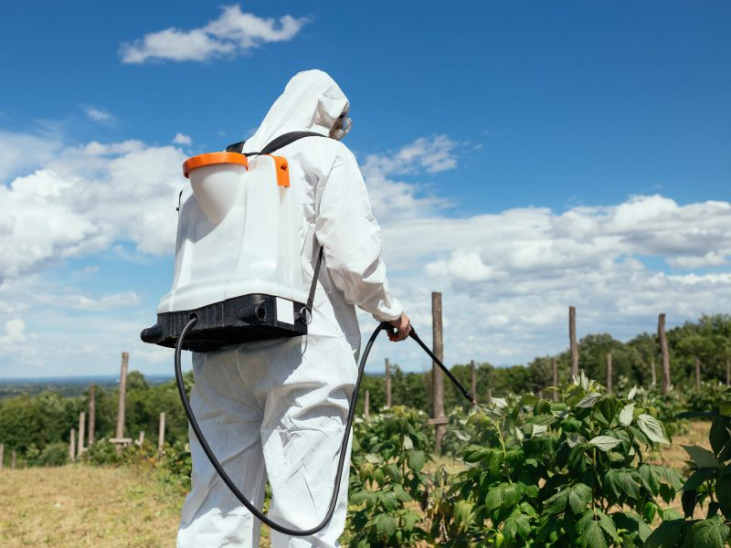 Treating herbicide buildup in your body