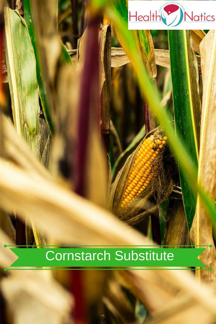 5 Best Cornstarch Substitute, Replacement And Alternatives