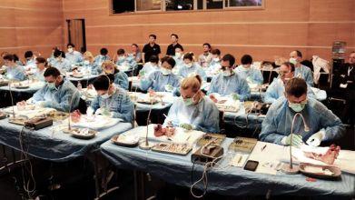 Ein Hands-On-Workshop am Schweinekiefer.