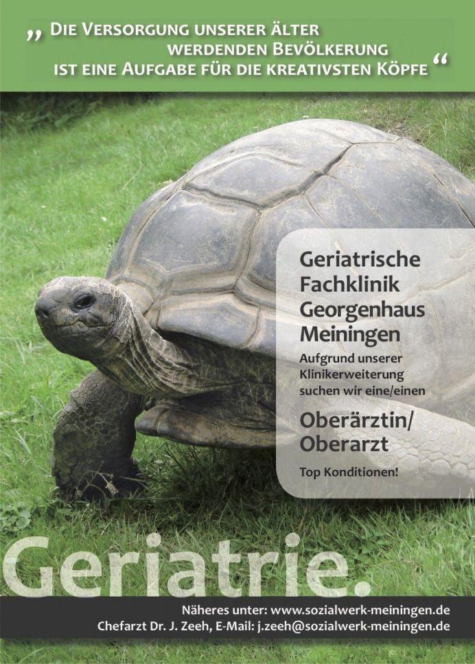 """BIG CREATION: """"Schildkröte"""", von Sozialwerk Meiningen gGmbH/Westpress Agentur für Personalmarketing"""