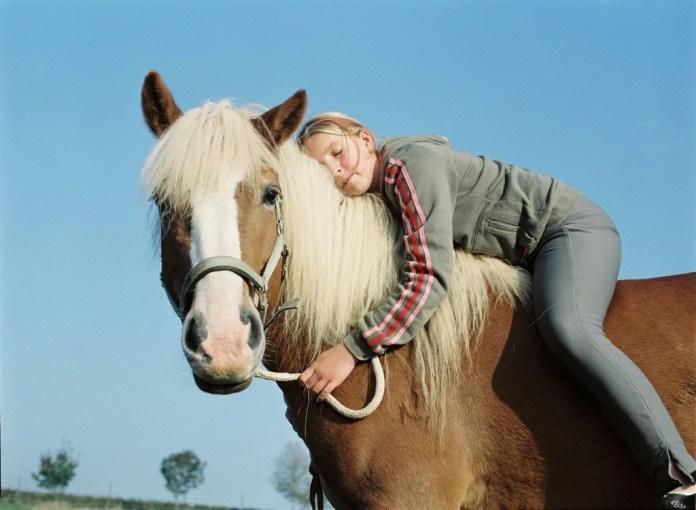 Erklärfilme helfen auch dem Tierarzt