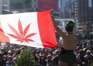 Marijuana Legalizing Plan Debated Throughout Canada