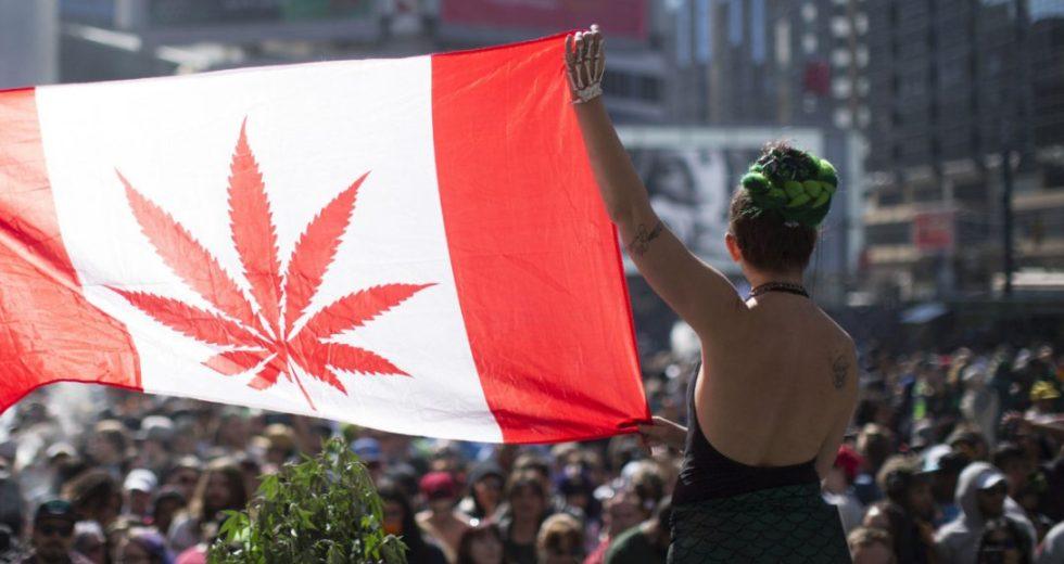 Marijuana Legalizing Plan Debated Throughout Canada