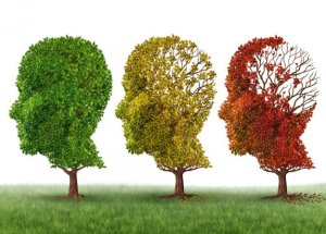 Alzheimer: All the new Updates Regarding Prevention