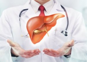 The Best Natural Treatments And Medicinal Plants For Liver Detoxification
