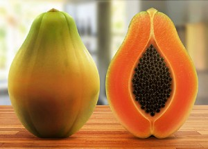 Maradol Papayas Infected People From The U.S With Salmonella