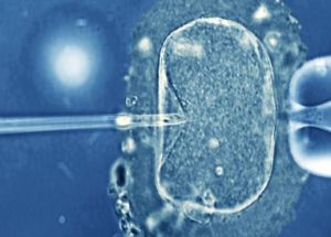 """A new calculator reveals how """"old"""" your sperm is and how it can affect your offspring"""