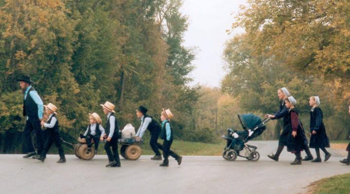 Amish Community Carries Anti-Diabetic Gene That Makes Them Live Longer