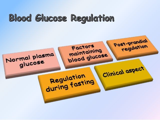 Blood Glucose Levels – What Are The Normal Readings?