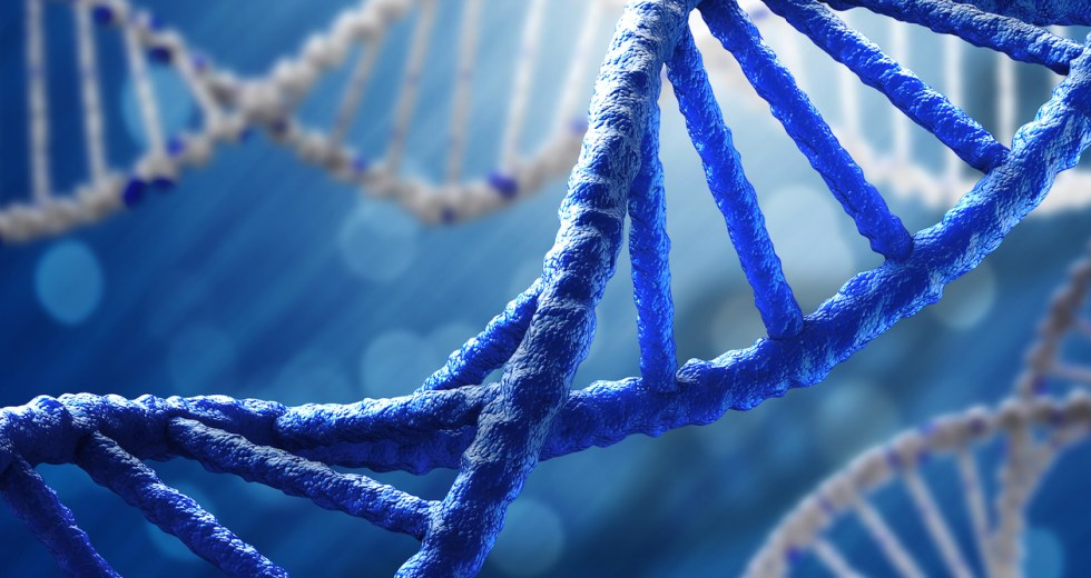 Best Ancestry DNA Tests And How They Work