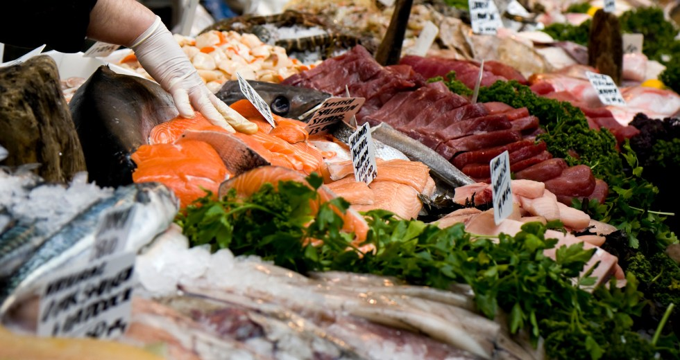 How are Authorities Fighting to End the Seafood Black Market