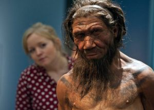 New study shows that humans have interbreed in the past