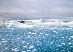 The Arctic Ice Melting to be a Reason for Territorial Arguments?