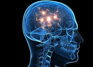 Scientists Studied The Brain's Behavior Before And After Death And The Results Are Overwhelming