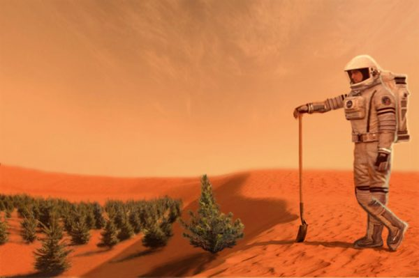 Mars Colonization: The Gravity Of Mars Alters The Normal Growth Of Plants At A Cellular Level