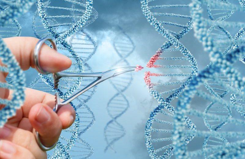 An Alzheimer's Disease Treatment That Fixes Alzheimer's Gene Has Been Developed