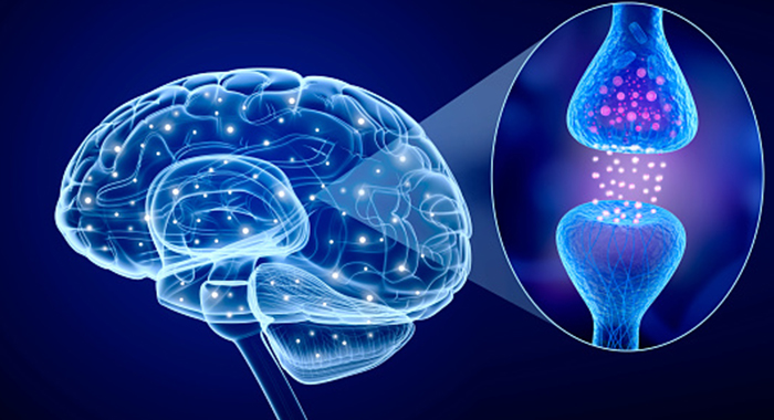 Parkinson's Disease – New Methods Of Treatment Are Tested To Reduce Symptoms Of This Neurodegenerative Disease